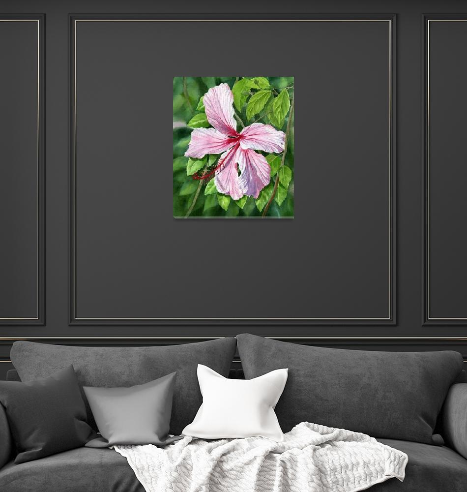 """""""Pink and Red Hibiscus""""  (2011) by Pacific-NW-Watercolors"""