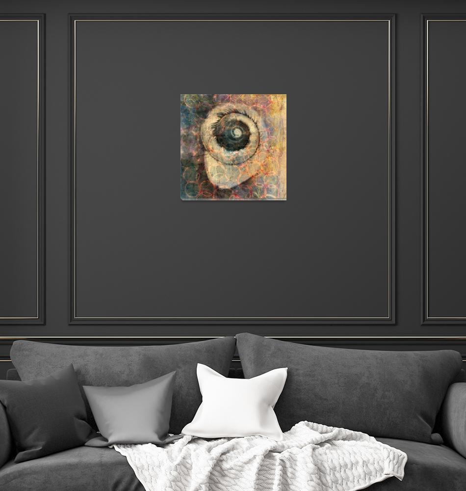 """Spiral Sea Snail""  by ElenaRay"