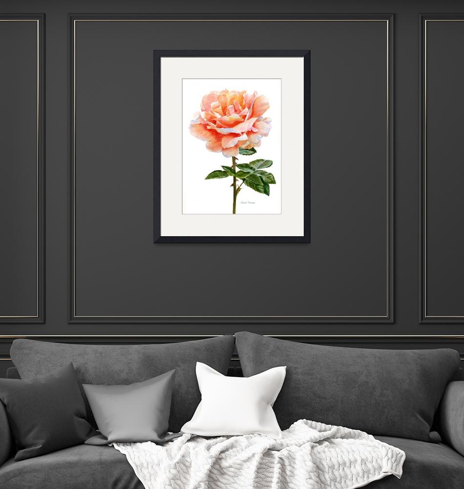 """""""Orange and Gold Rose with Leaves"""" (2016) by Pacific-NW-Watercolors"""