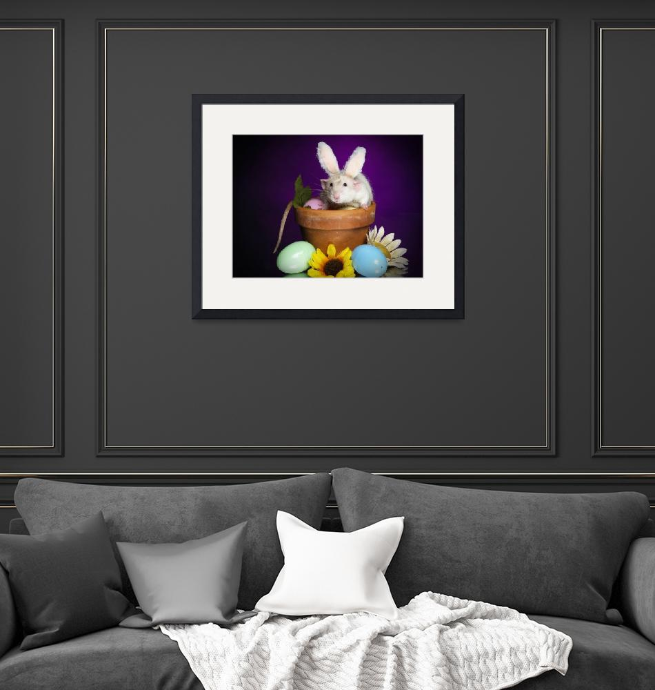 """""""Easter bunny Huxley""""  (2009) by strickland"""