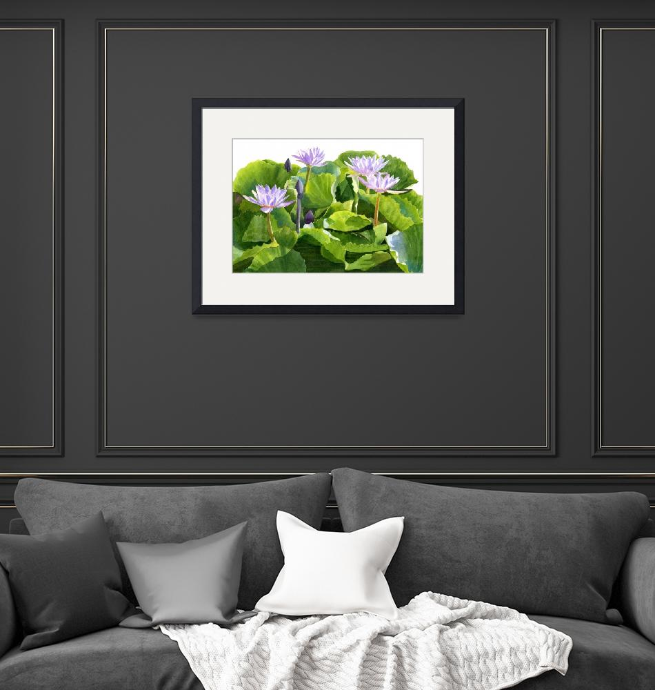 """""""Four Lavender Water Lilies  (white background)""""  (2015) by Pacific-NW-Watercolors"""