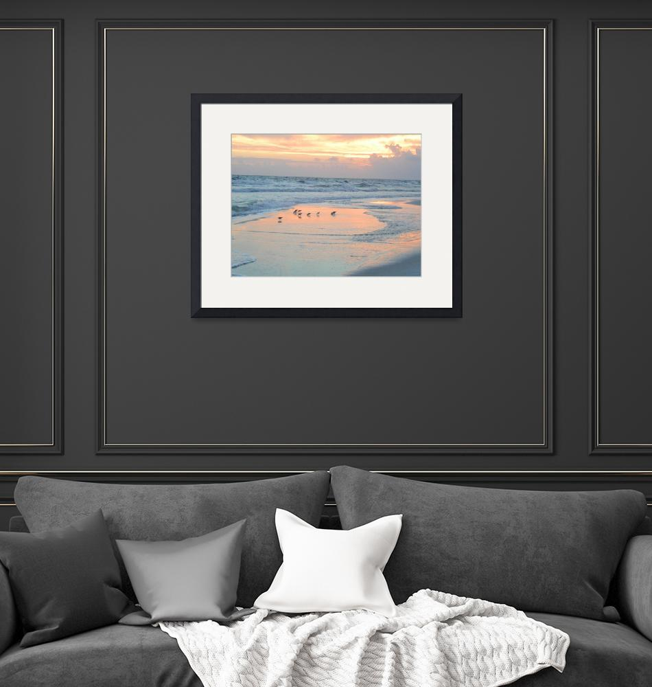 """""""Birds on beach at sunset""""  (2012) by kenrainwaterphotography"""