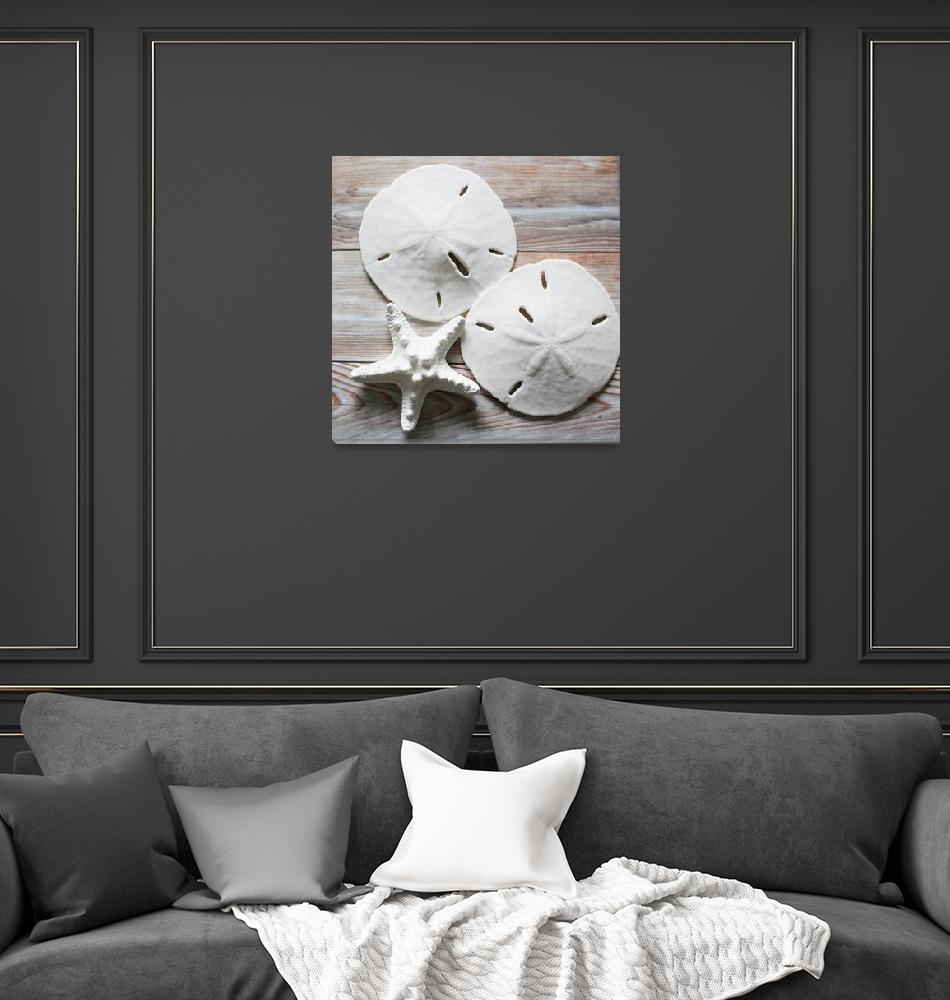 """ORL-5622-2 Seashells on Wood XV""  by Aneri"