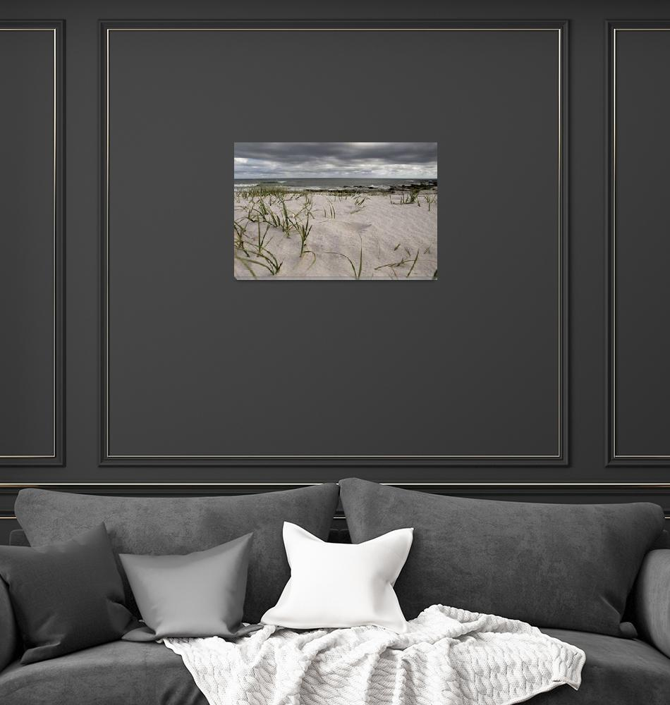 """""""Cape Point beach""""  (2010) by JEvans"""