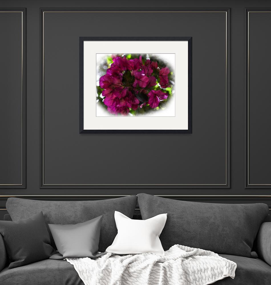"""""""Bougainvillea Dark And Bold""""  (2019) by Kirtdtisdale"""