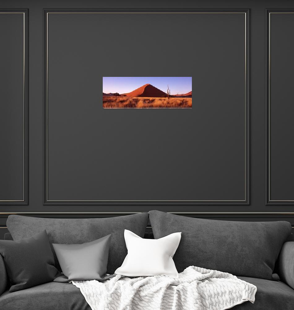 """""""Grassland with sand dunes in the background Namib""""  by Panoramic_Images"""