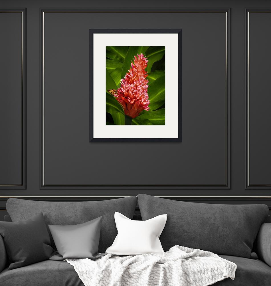 """""""Red Ginger with Butterfly""""  by jvittek"""