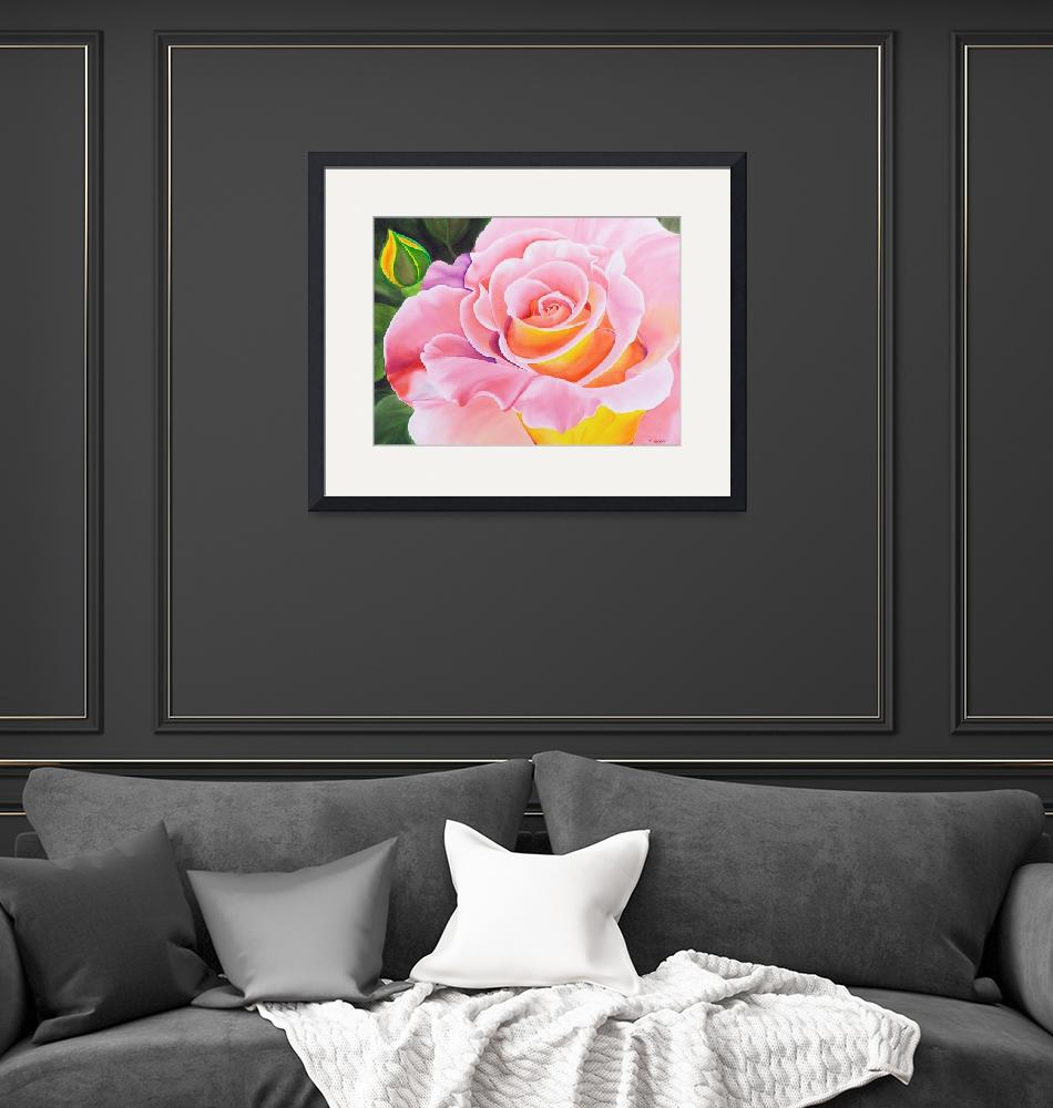 """""""Rose and Bud""""  (2006) by ronmeadow"""