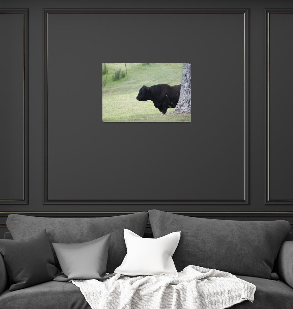 """""""Bull Facing Right""""  (2011) by smokienadroj"""
