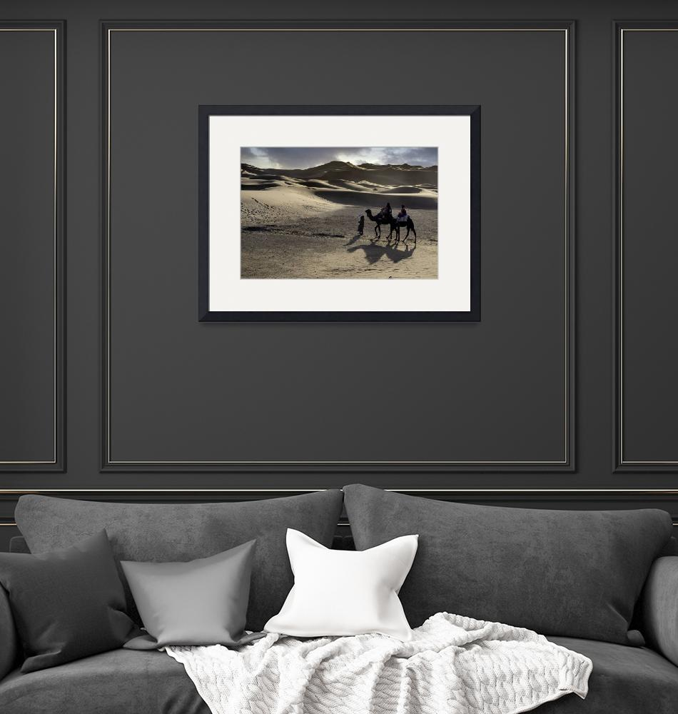 """""""Camels and Shadows, Sahara Desert""""  (2020) by SederquistPhotography"""