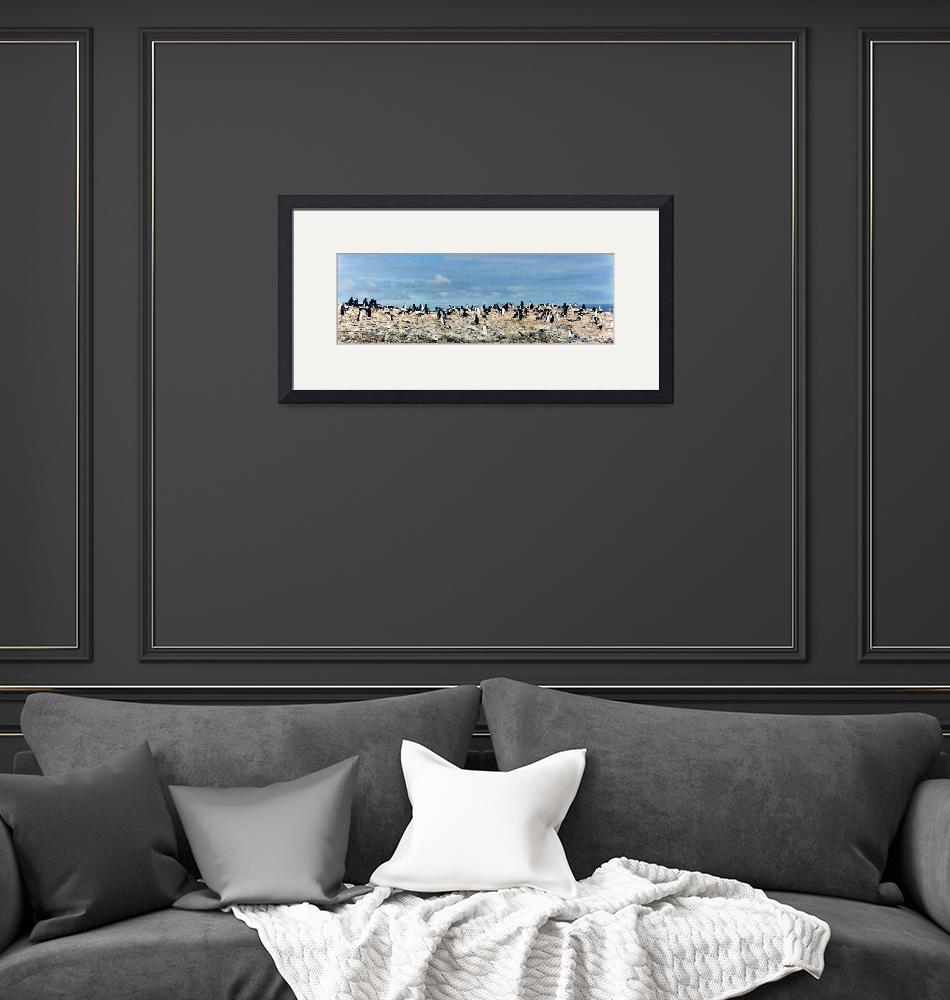 """""""Penguin Panorama""""  by AnnTuck"""