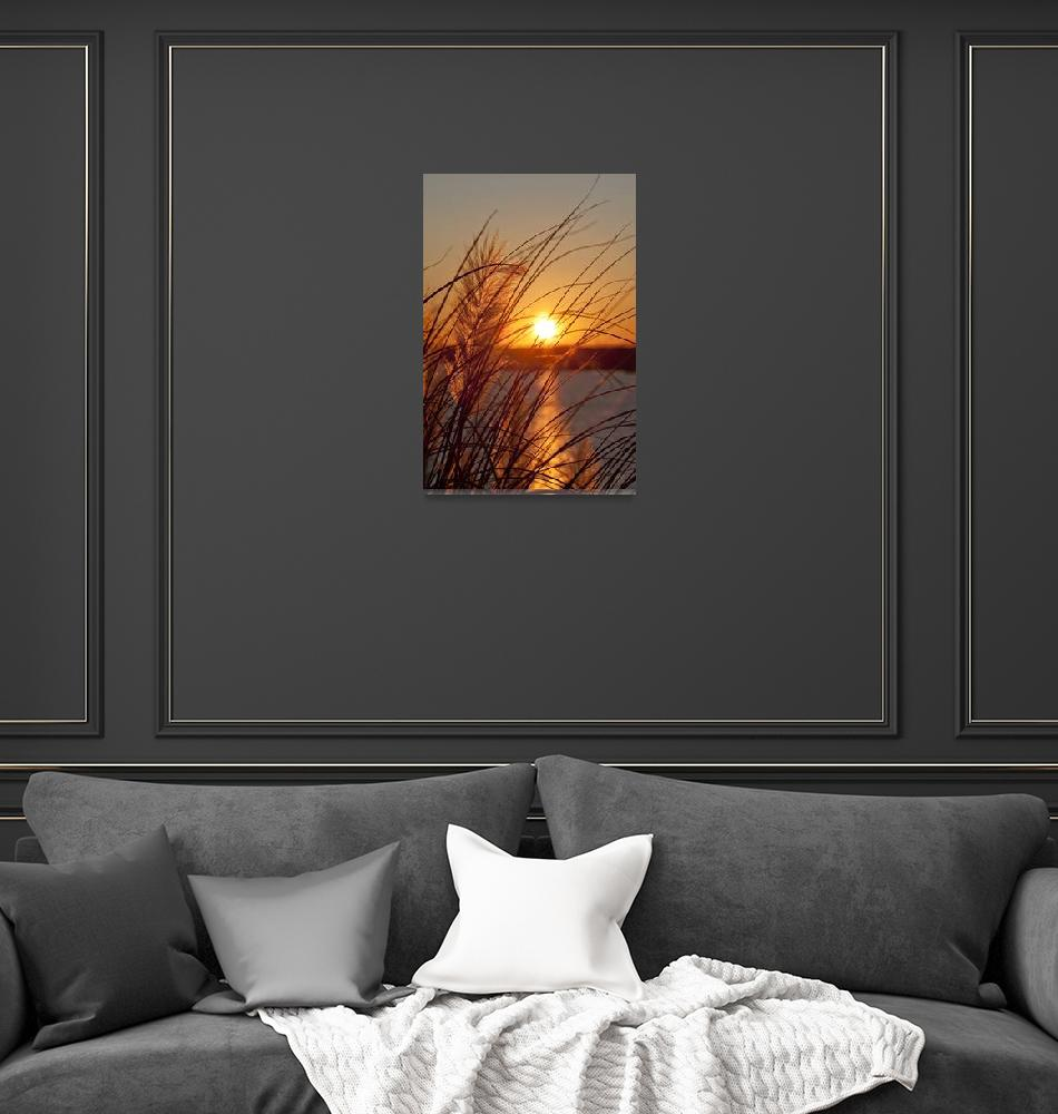 """""""Sunset Through the Grass""""  (2009) by DustinKRyan"""