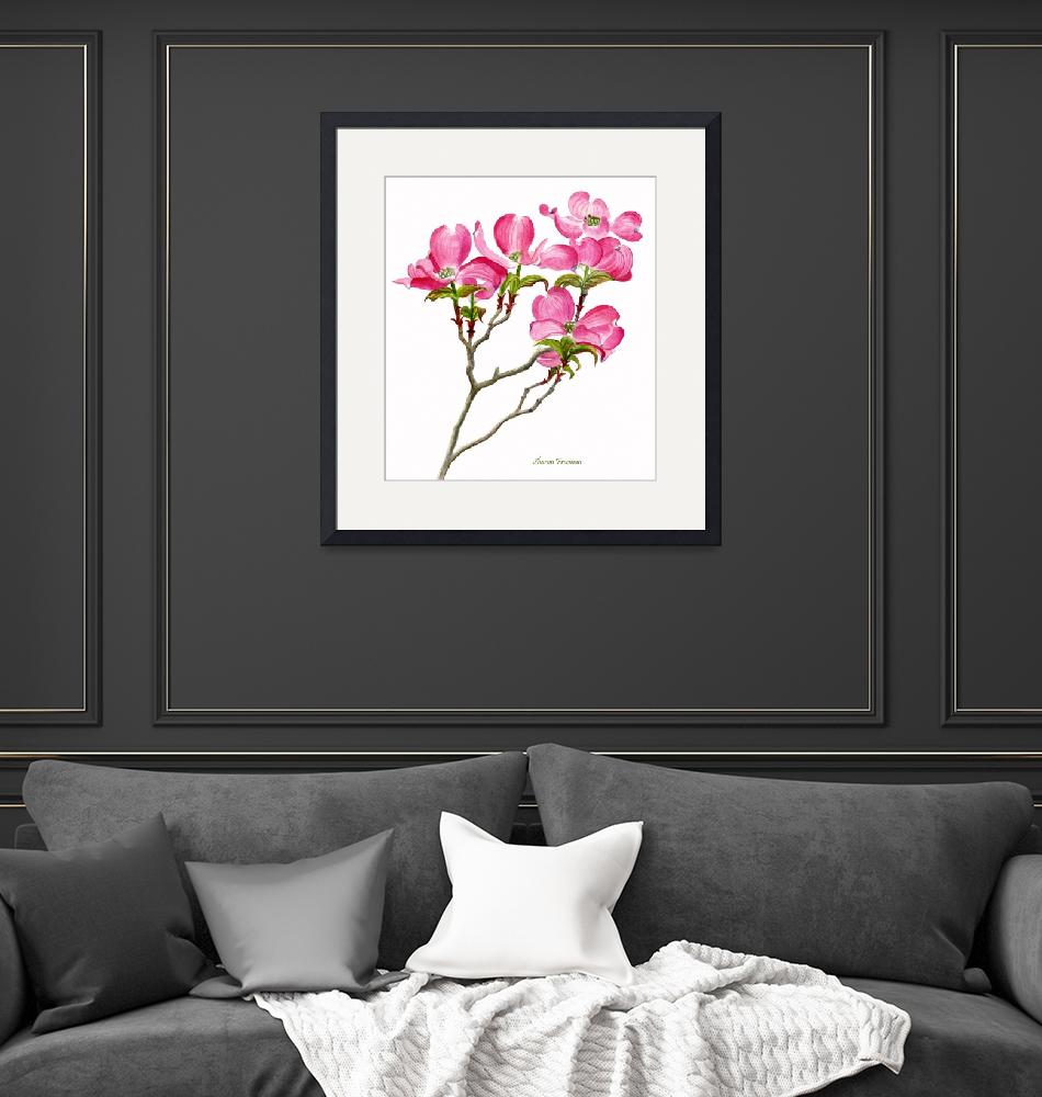 """""""Pink Dogwood white background (vertical design)""""  (2009) by Pacific-NW-Watercolors"""