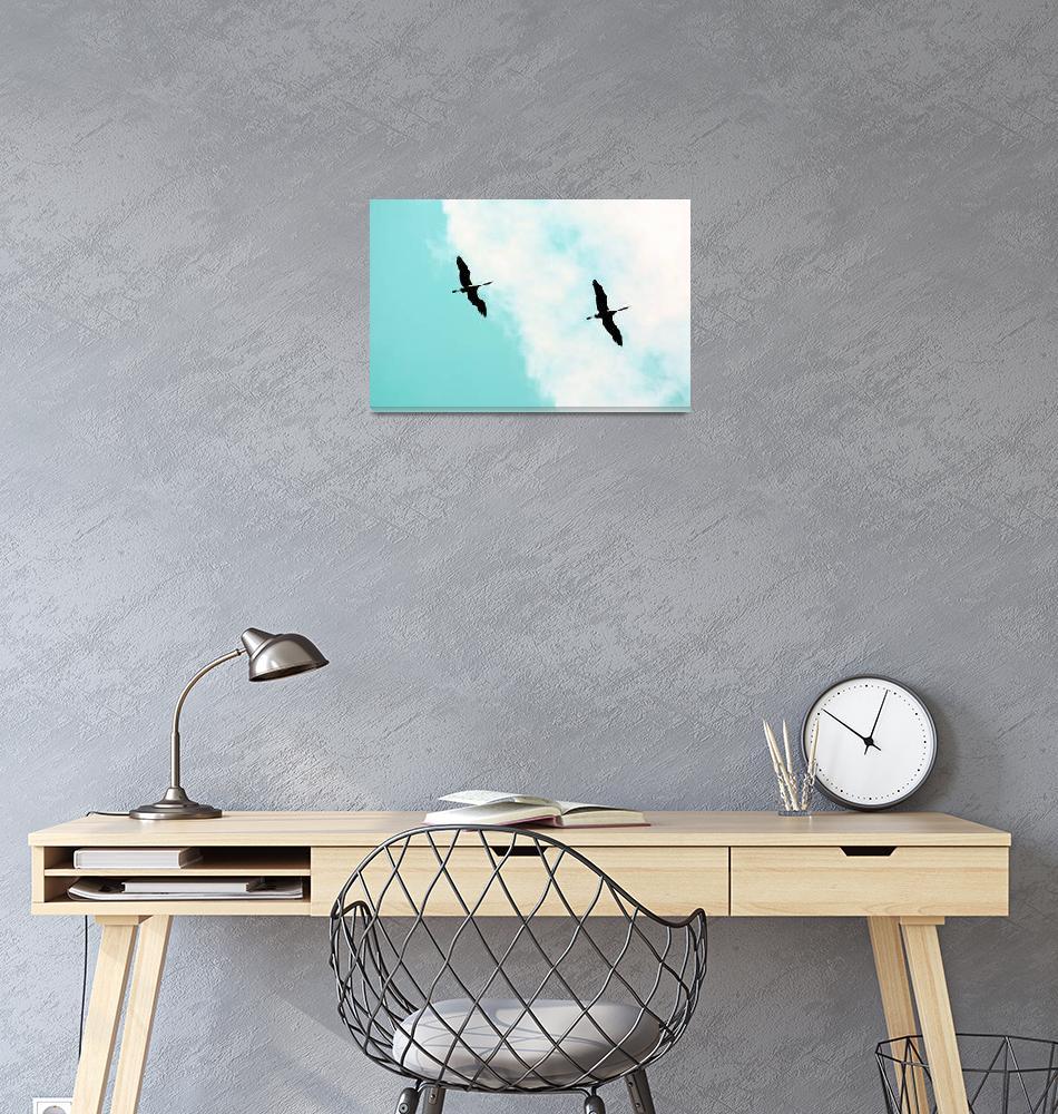 """Crane(s) V""  (2017) by talpazfridman"