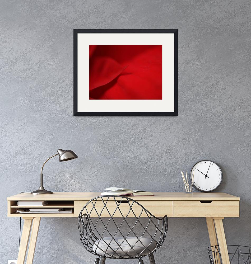 """""""Red""""  (2011) by guillaumetemin"""