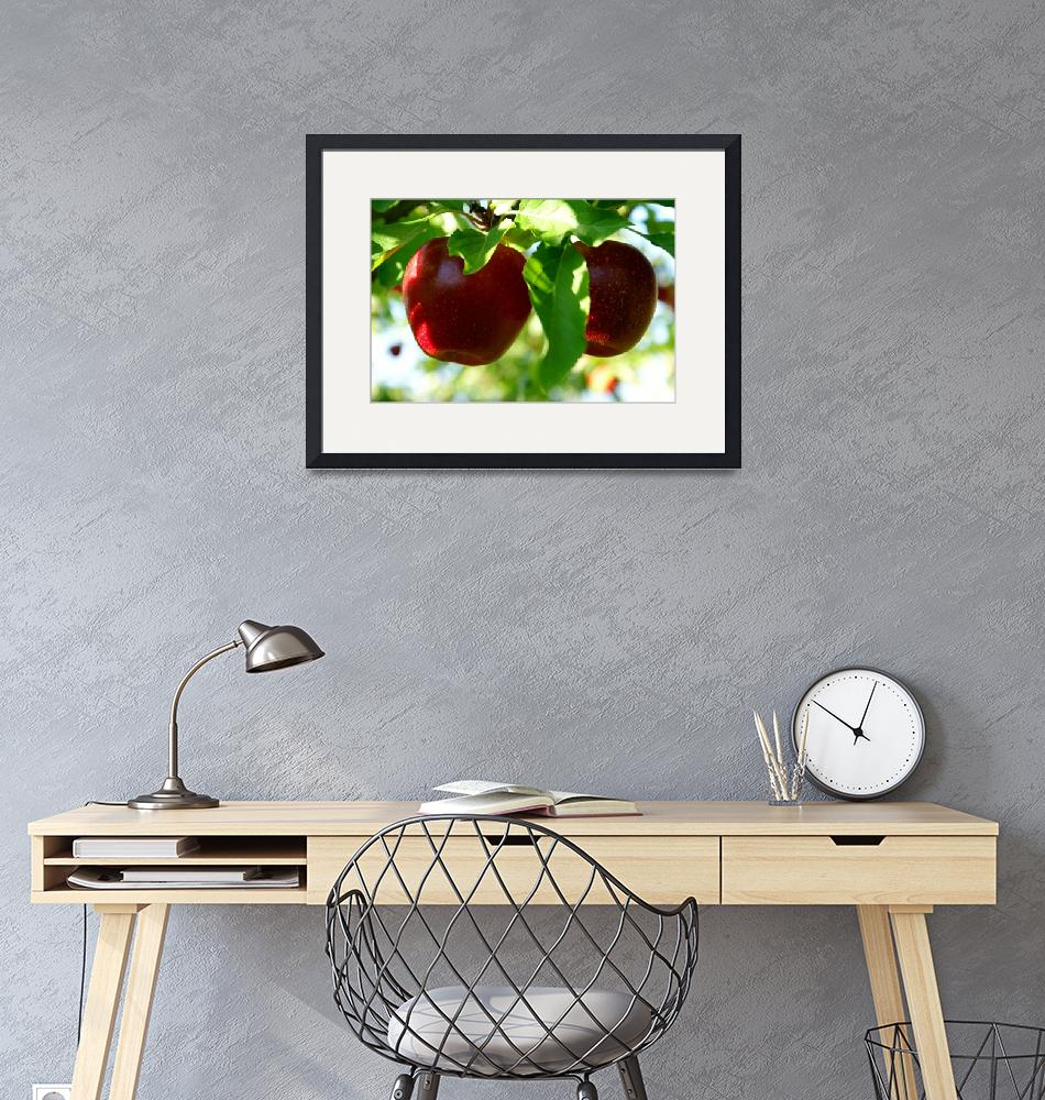 """Two Red Apples"" (2007) by kml"
