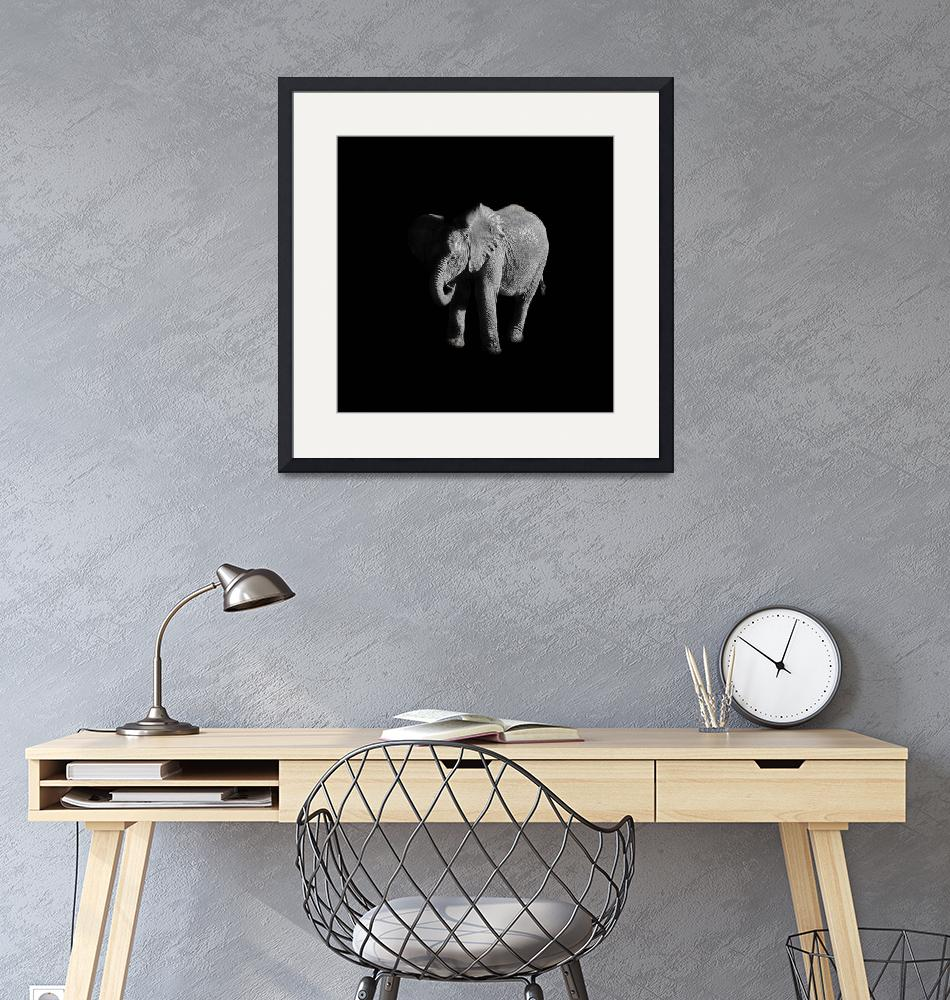 """""""Baby African Elephant""""  (2017) by CathyWithersClarke"""