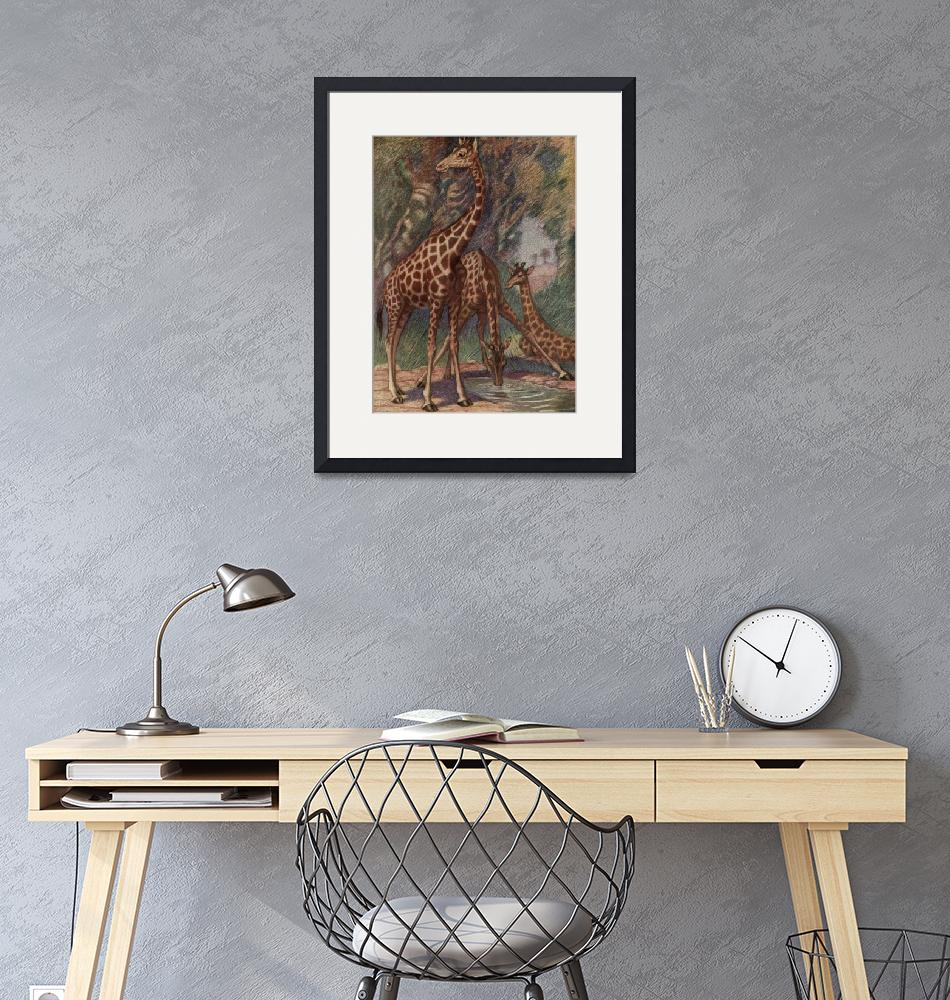 """Vintage Giraffe Painting (1909)""  by Alleycatshirts"