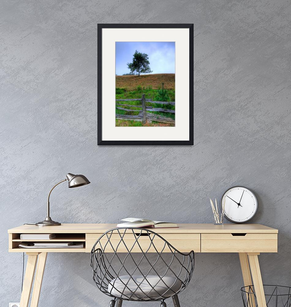 """""""Fenced pasture and foggy Tree""""  by RobertDonovan"""