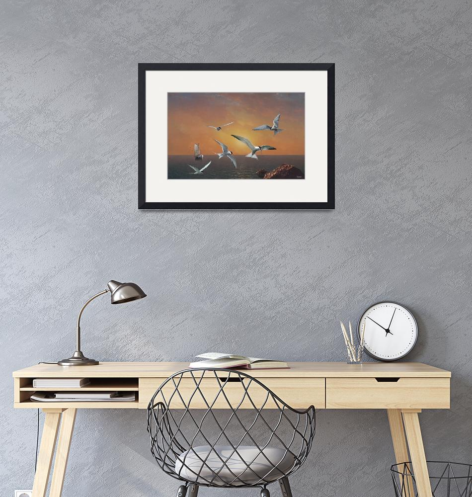 """""""Terns in the Sun""""  (2017) by spadecaller"""