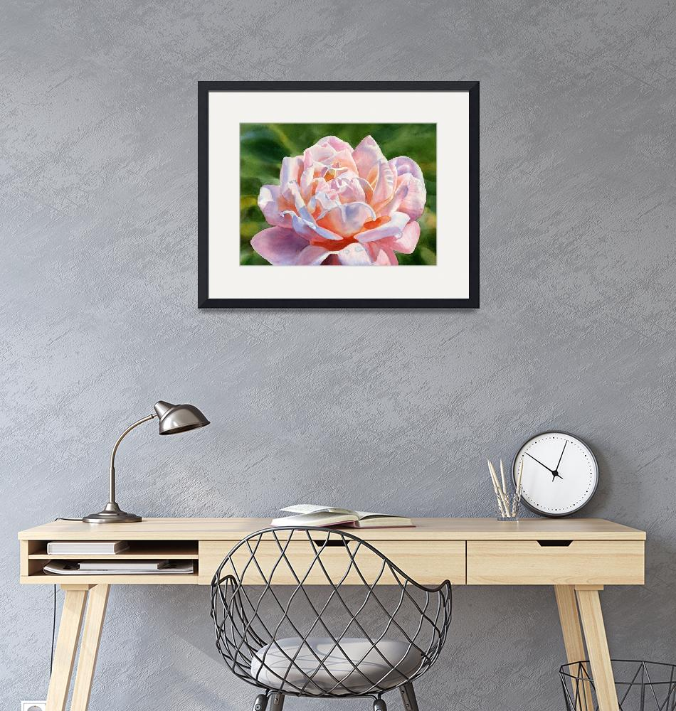 """""""One Pink and Peach Colored Rose Blossom"""" (2016) by Pacific-NW-Watercolors"""