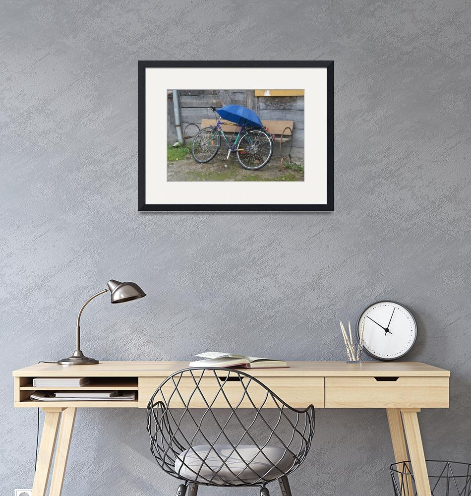 """""""Bicycle in Romania""""  (2015) by SherylP"""