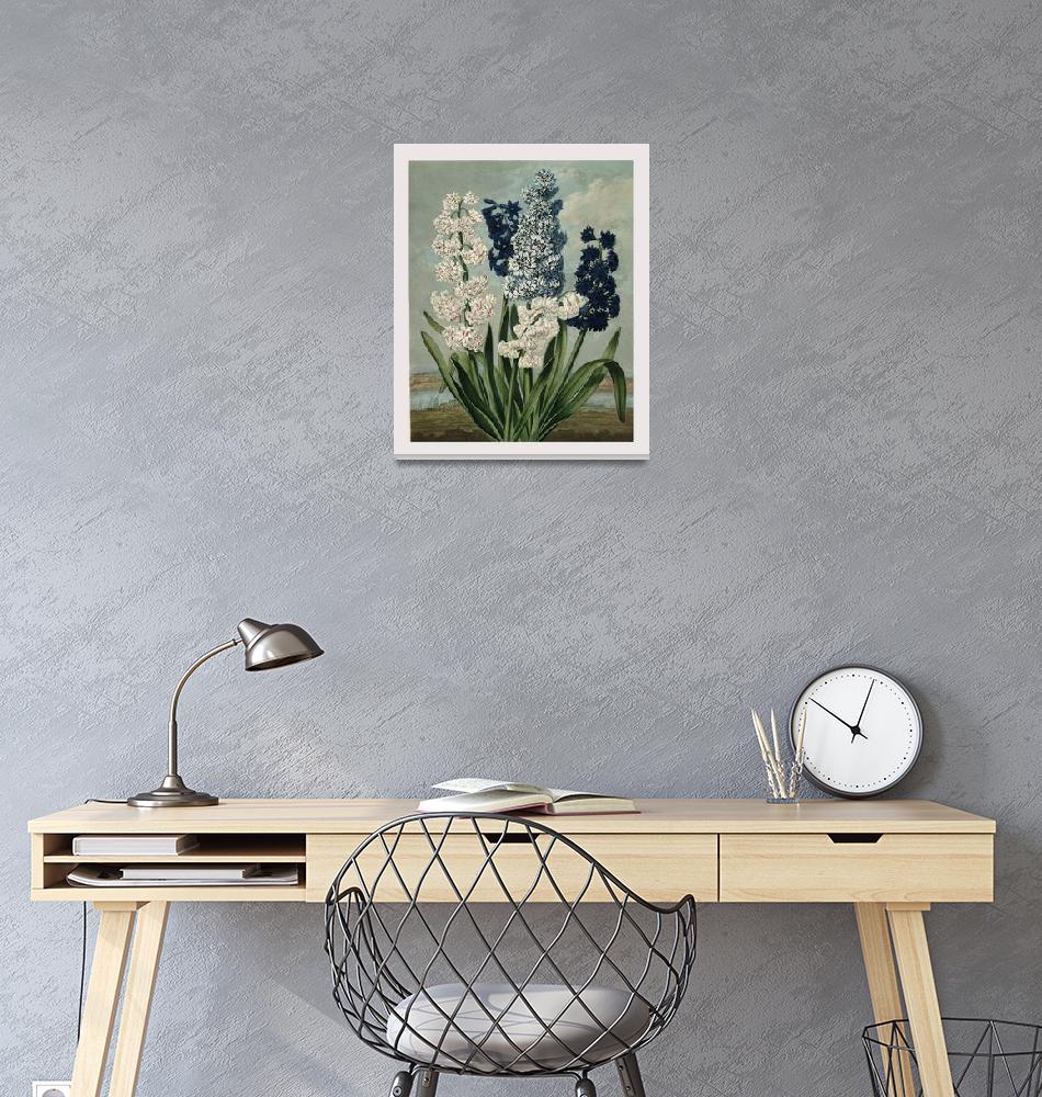 """Hyacinths""  by lookbackart"