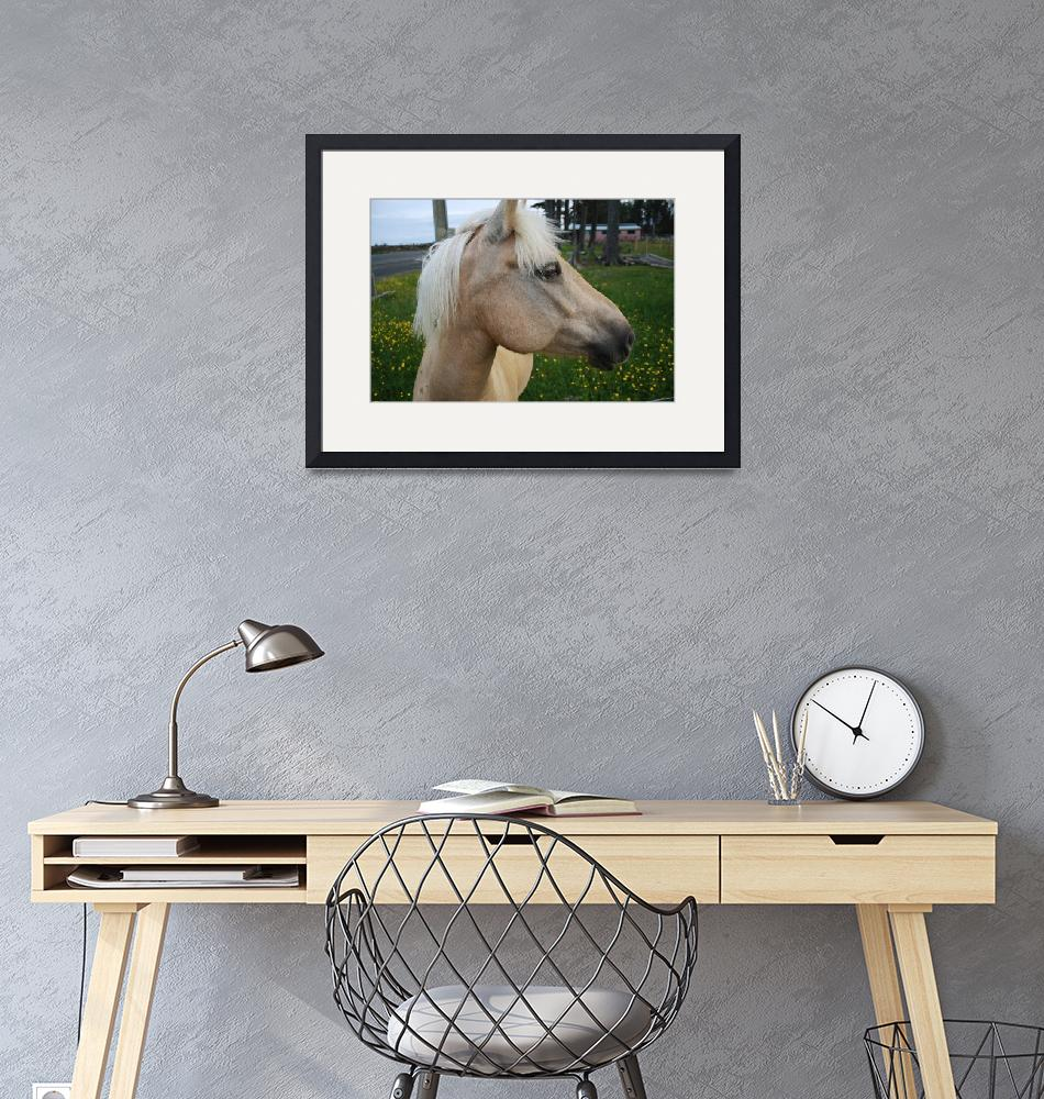 """""""Golden Horse 3""""  (2009) by dmarshall"""