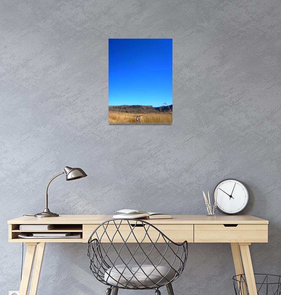 """Blue Sky""  (2008) by MeganBennett"
