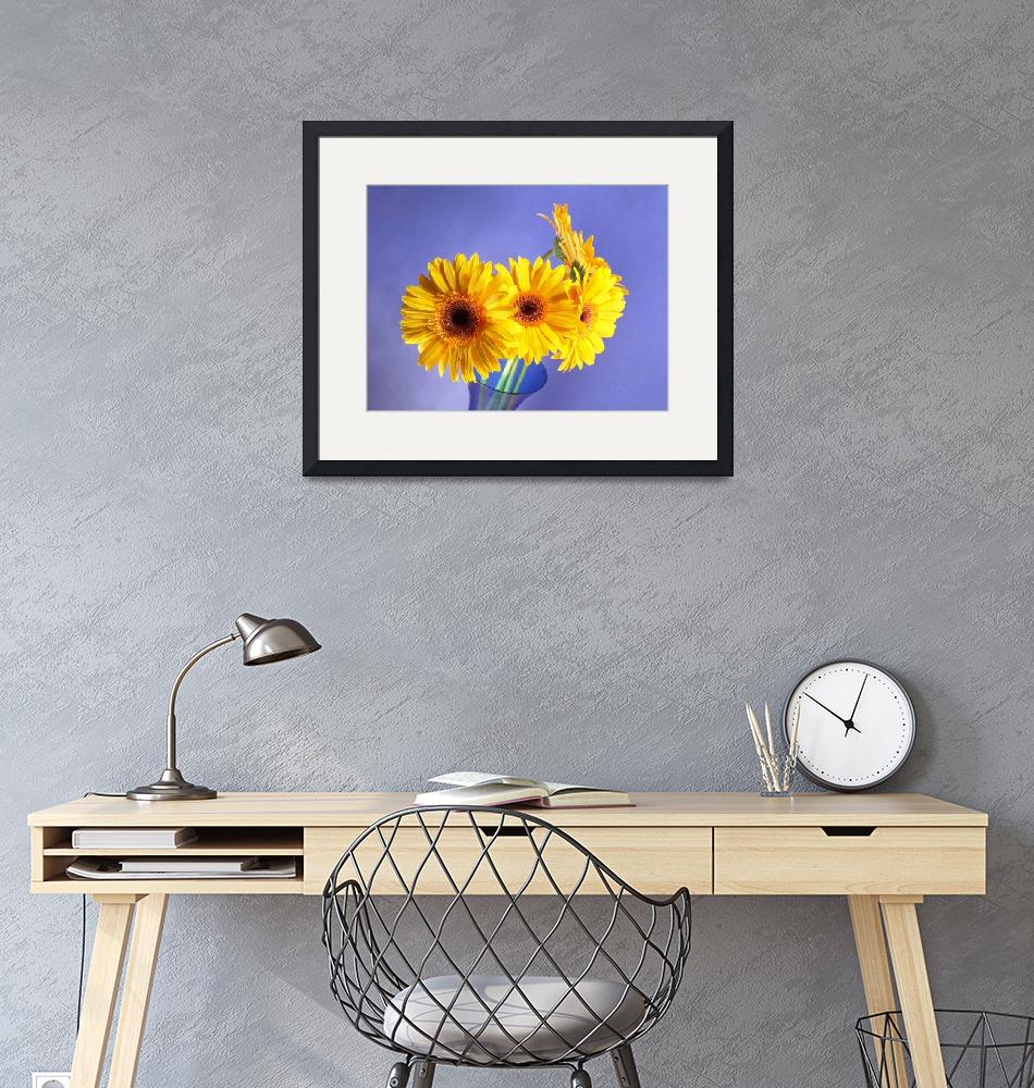 """""""Yellow Gerbera Daisies Choir""""  (2006) by Infomages"""