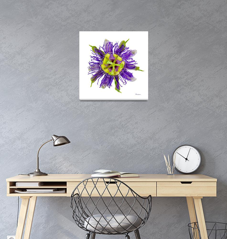 """Yellow Green and Violet Passion Flower 59674A""  (2018) by Ricardos"