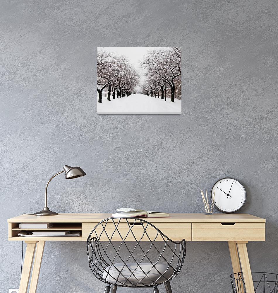 """Winter Road""  (2008) by LunarImage"