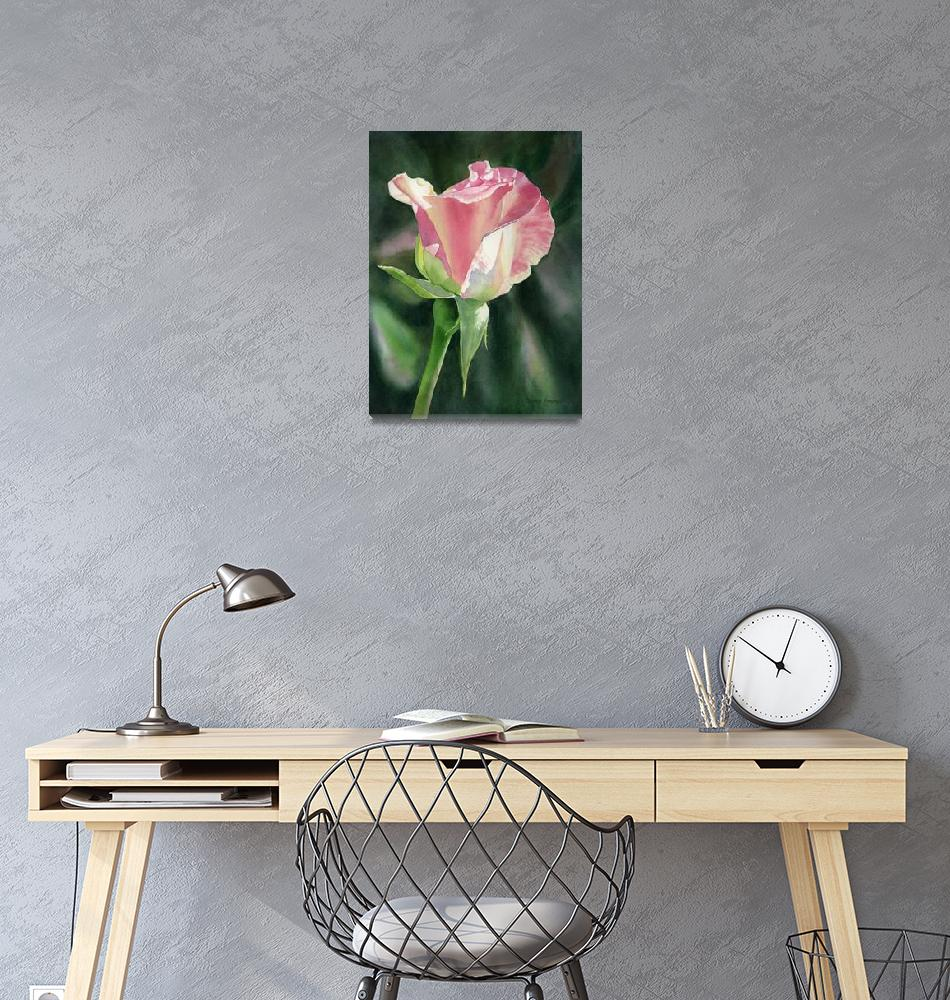 """""""Princess Diana Rose Bud""""  (2019) by Pacific-NW-Watercolors"""