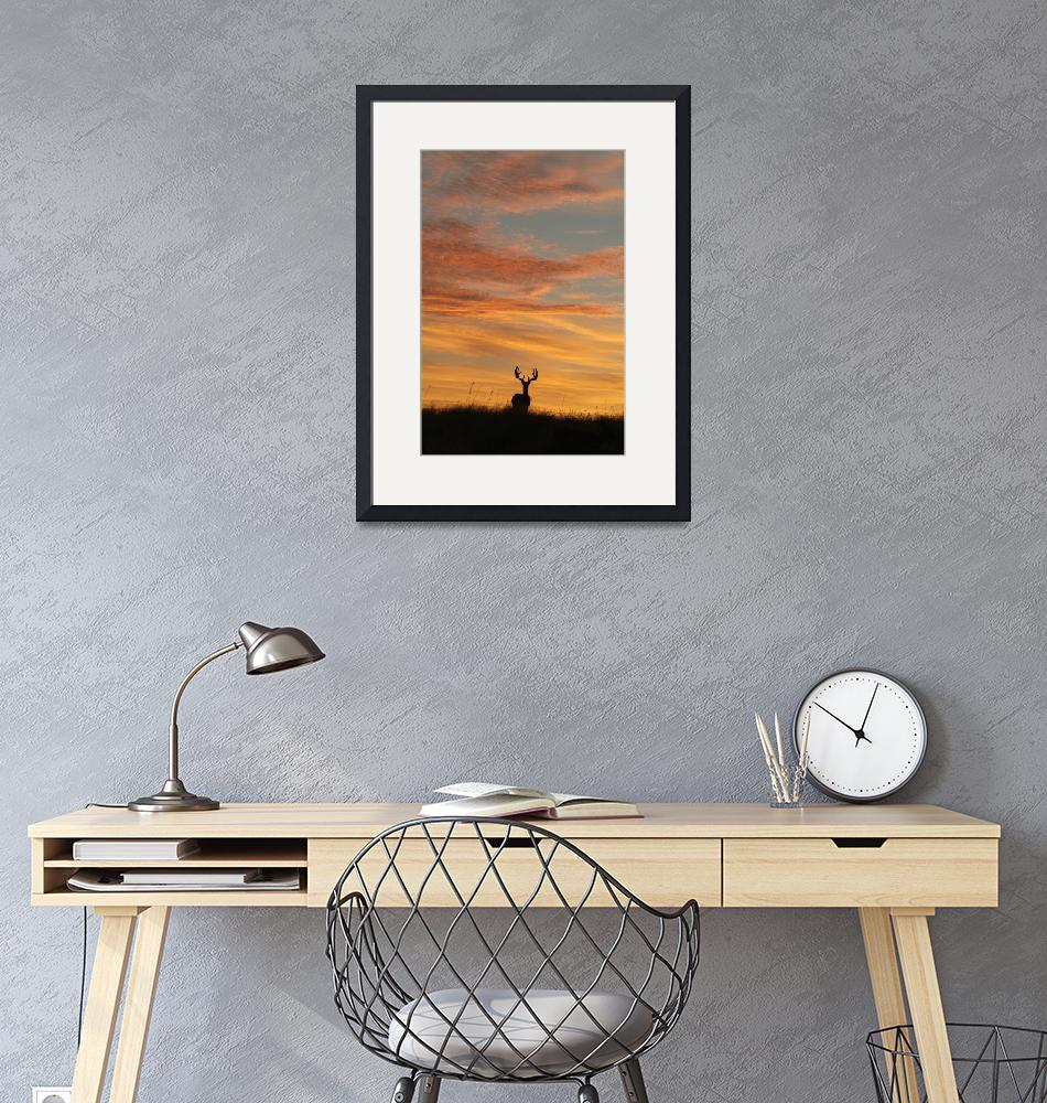 """""""Buck Silhouette at Sunset (portrait)""""  by PhotographicsUnlimited"""