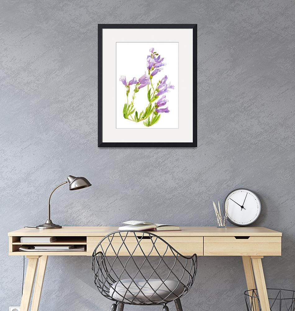 """""""lavender penstemon""""  (2015) by Pacific-NW-Watercolors"""