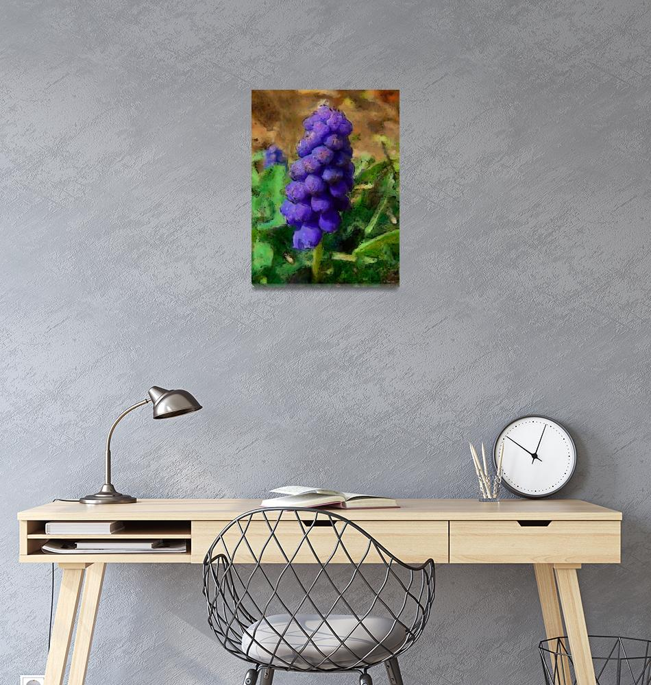 """""""Muscari""""  (2009) by deedemigjorn"""