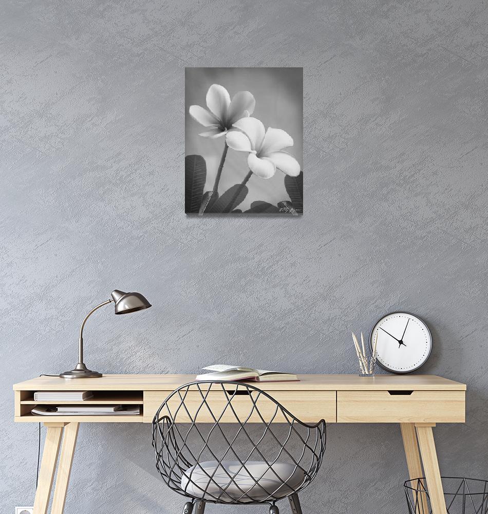 """411b Oriental Plumeria (Black and White Prints)""  by vitalygeyman"