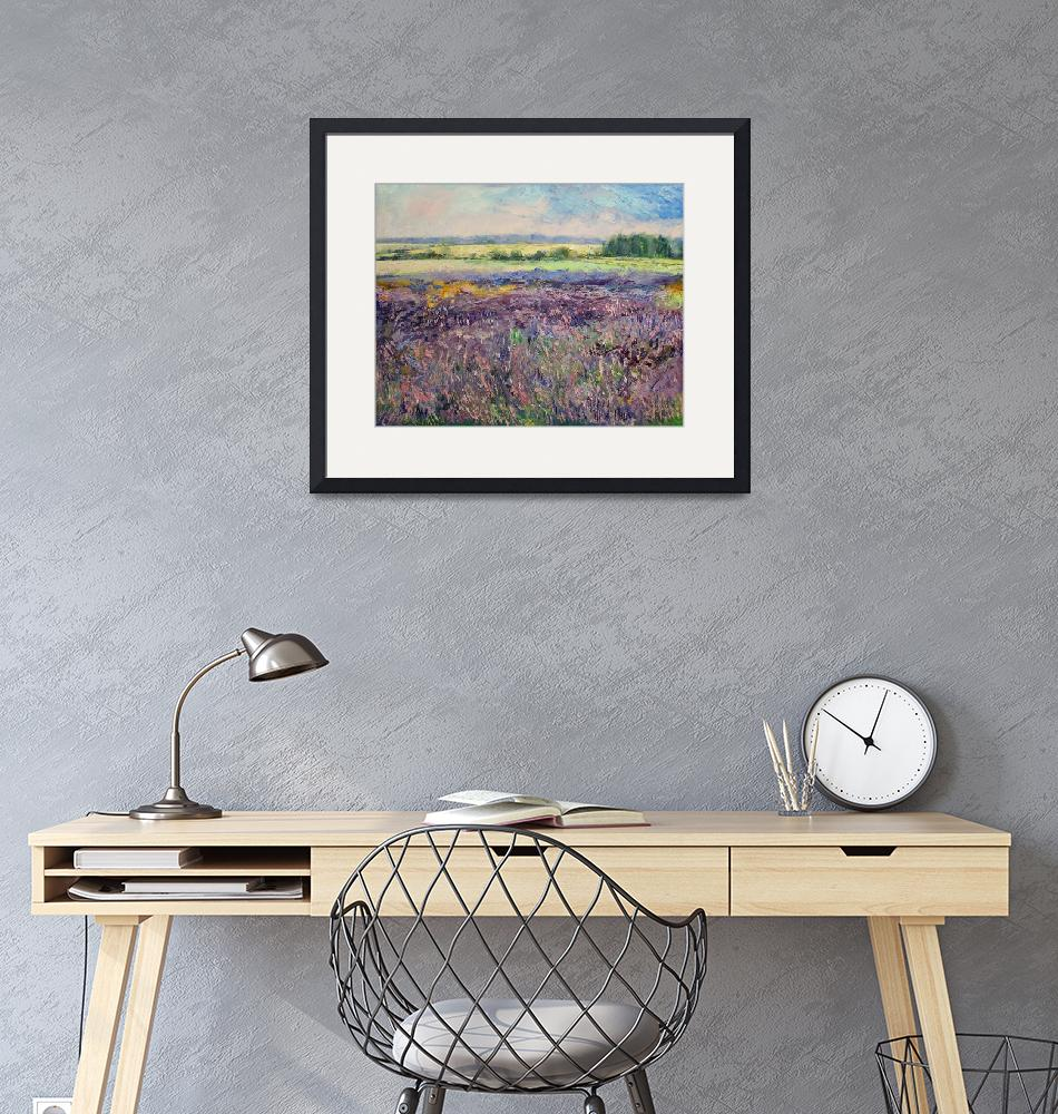 """""""Provence Lavender""""  by creese"""