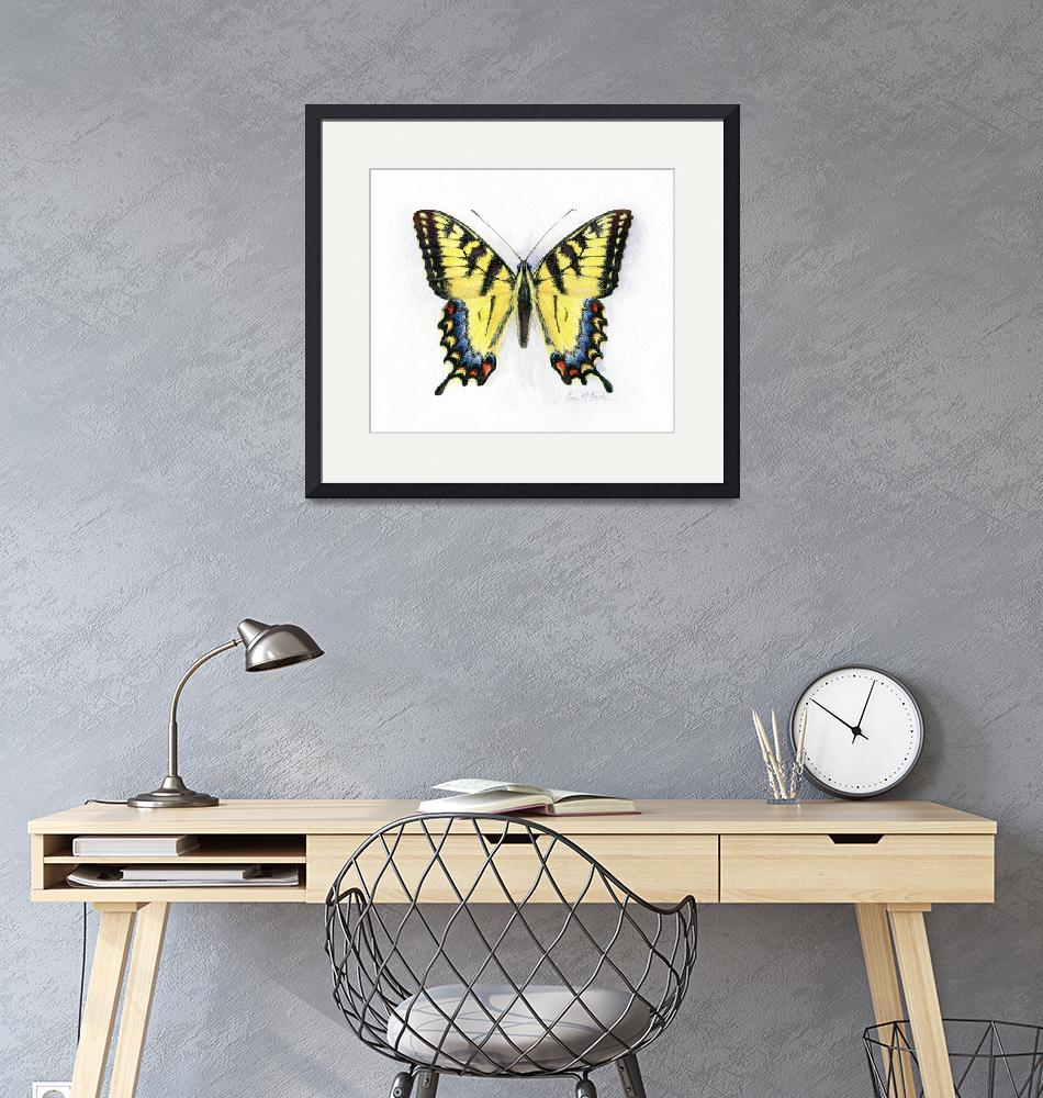 """""""western tiger swallowtail"""" (2008) by LisaMclaughlin"""