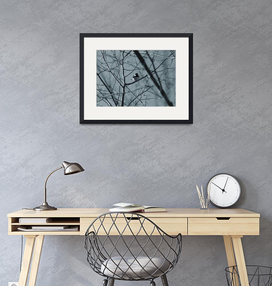 """""""Black capped chickadee sits in a tree""""  (2012) by KsWorldArt"""