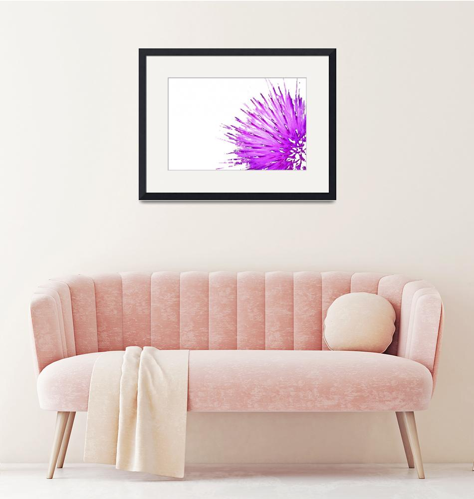 """Purple Thistle 3""  (2006) by OutsideShooter"