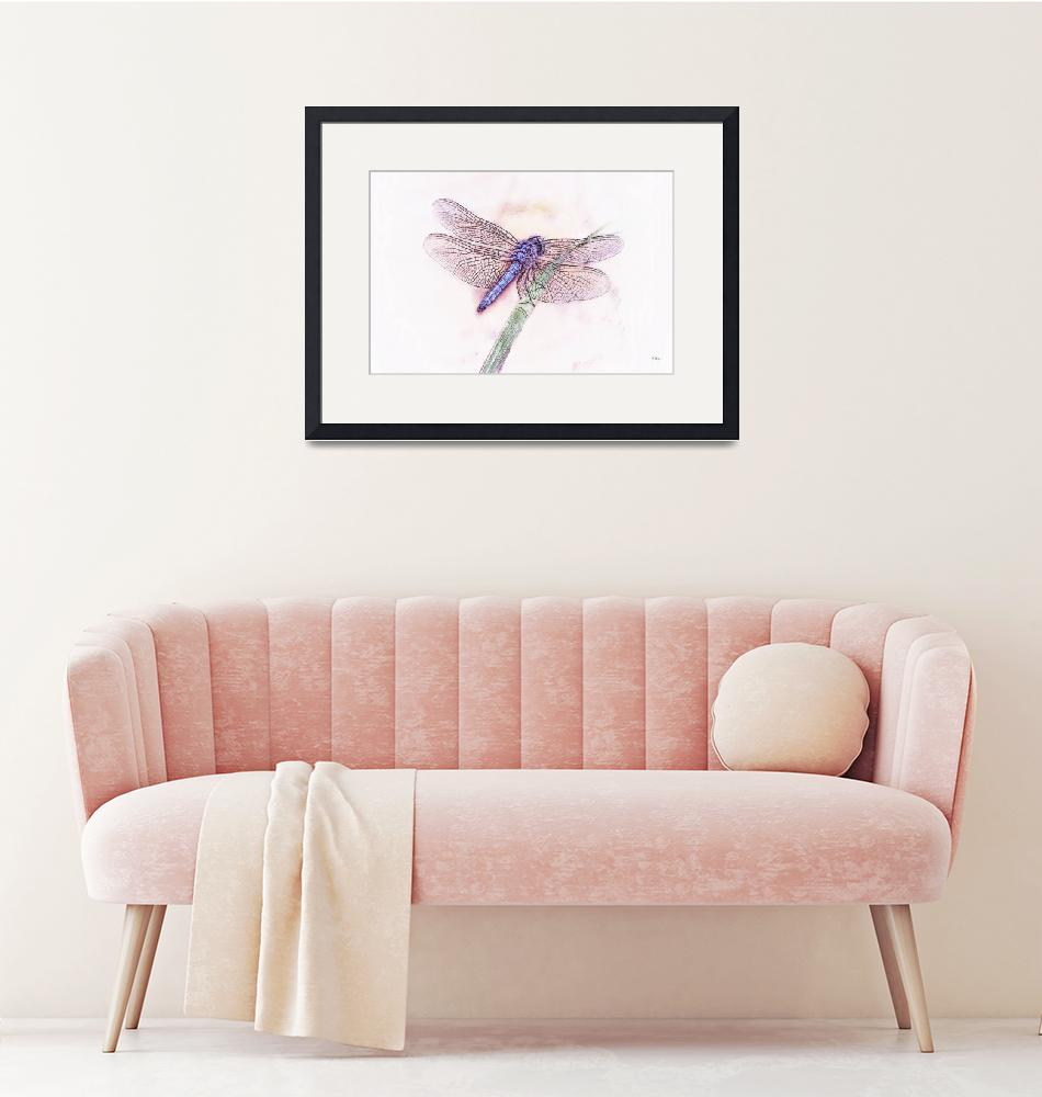 """""""Purple Dragonfly"""" (2008) by RLangen"""