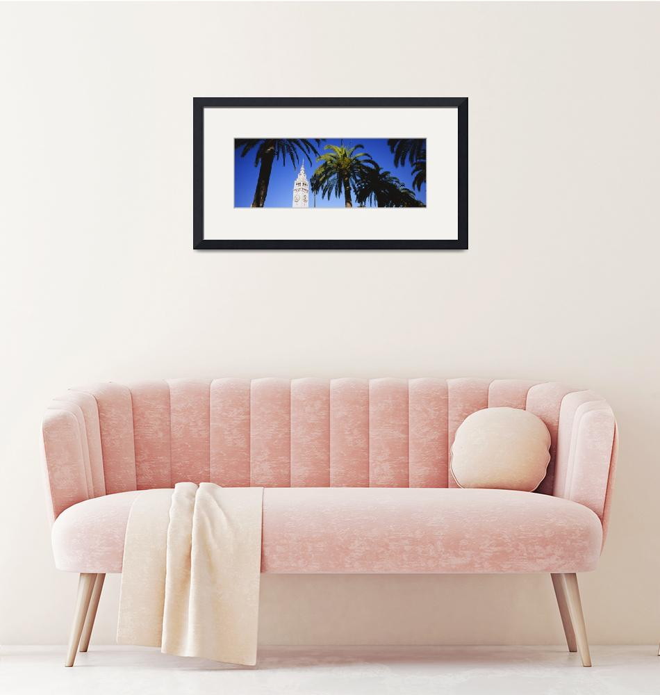 """""""Low angle view of palm trees""""  by Panoramic_Images"""