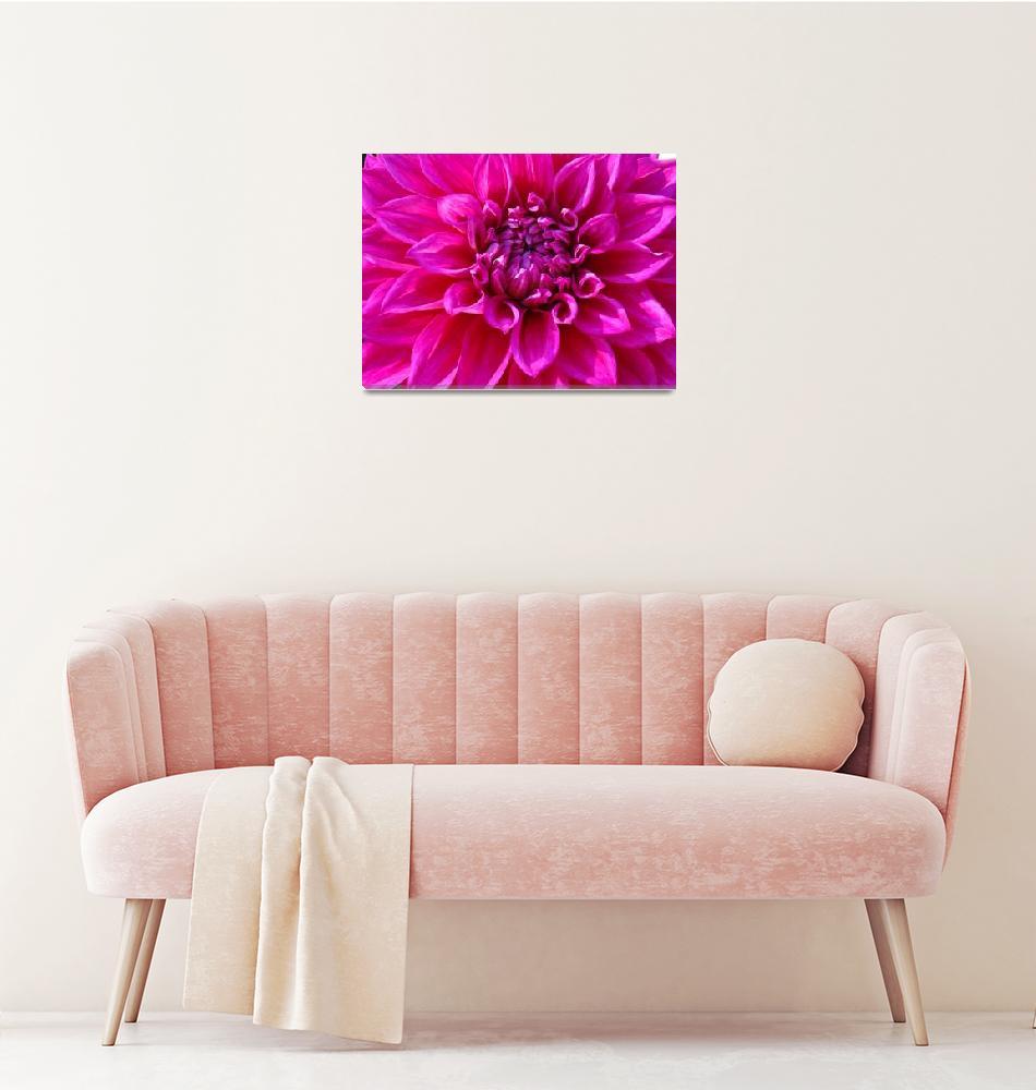 """Dahlia Flower Pink Purple Floral art prints""  (2011) by BasleeTroutman"