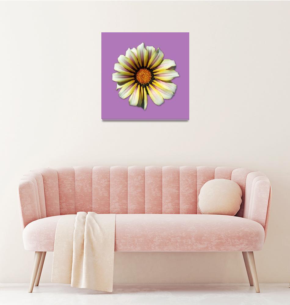 """Think Spring Flower Lavender""  (2015) by theJasonKnight"