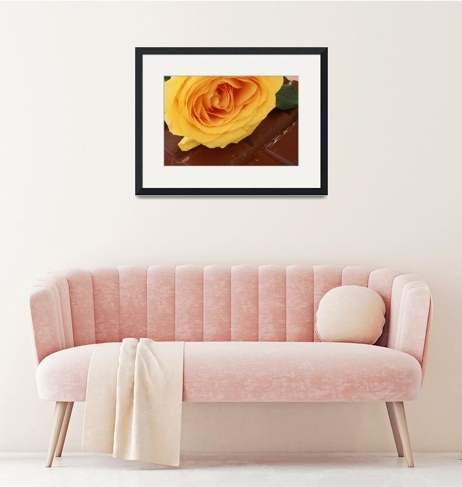"""""""Yellow Rose and Chocolate""""  (2013) by rhamm"""