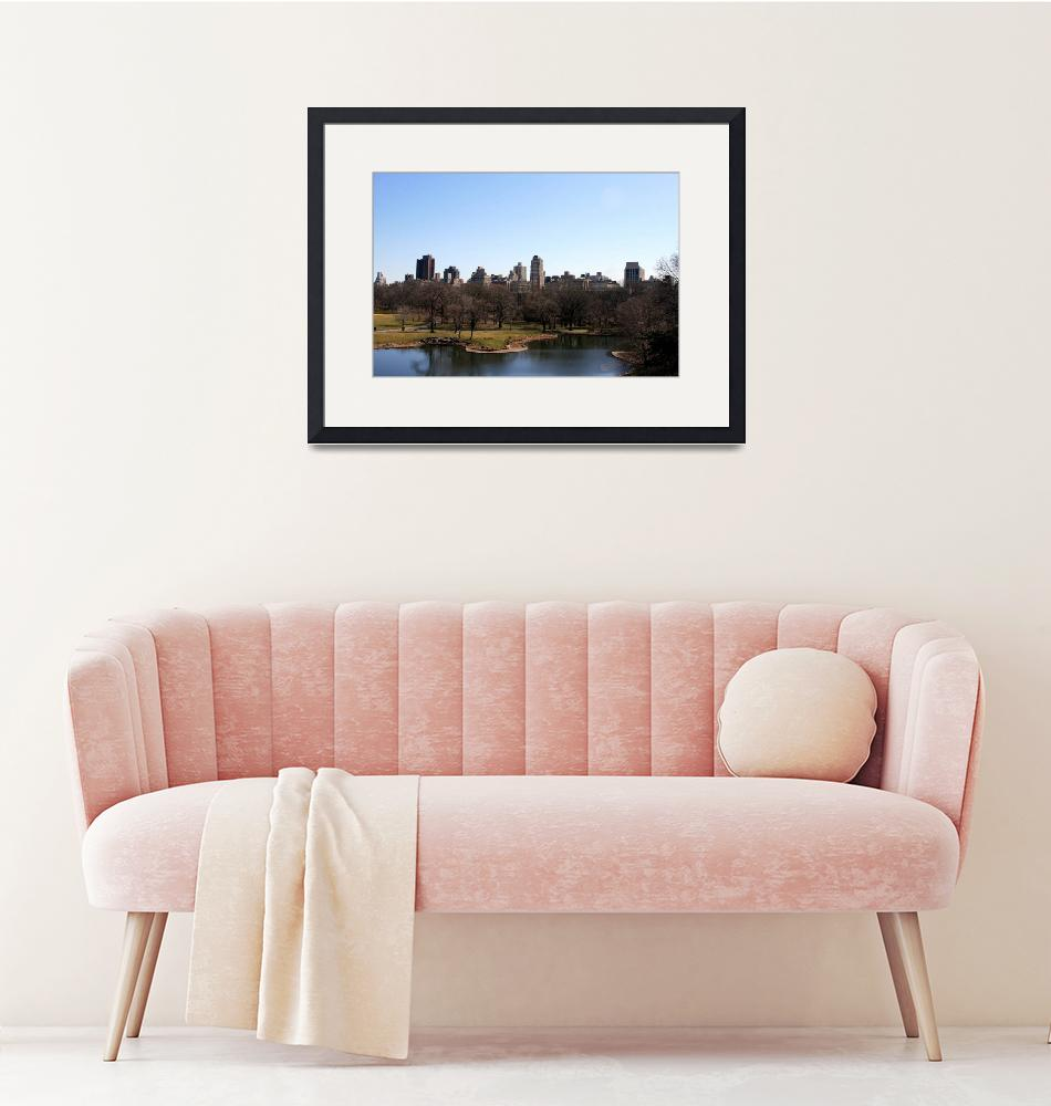 """""""Central Park from a Castle""""  (2009) by FriendZone"""