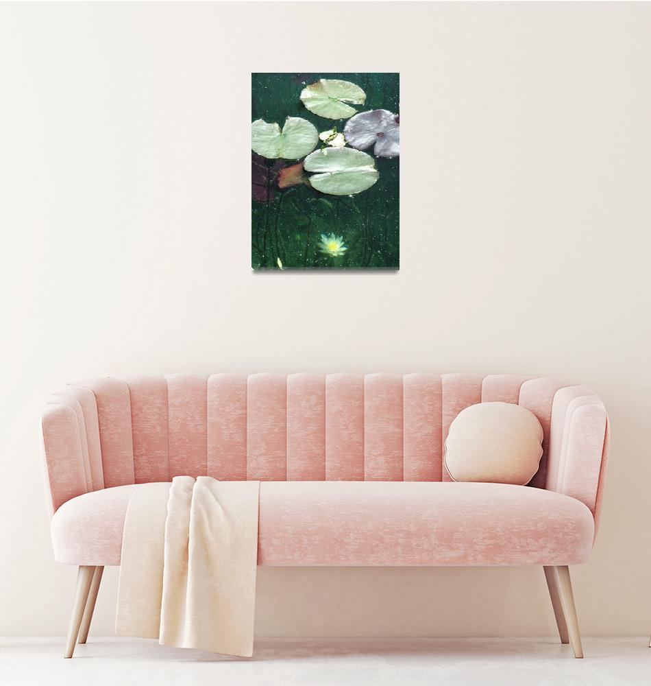 """Lake Bled Lilypad""  (2005) by DonnaCorless"
