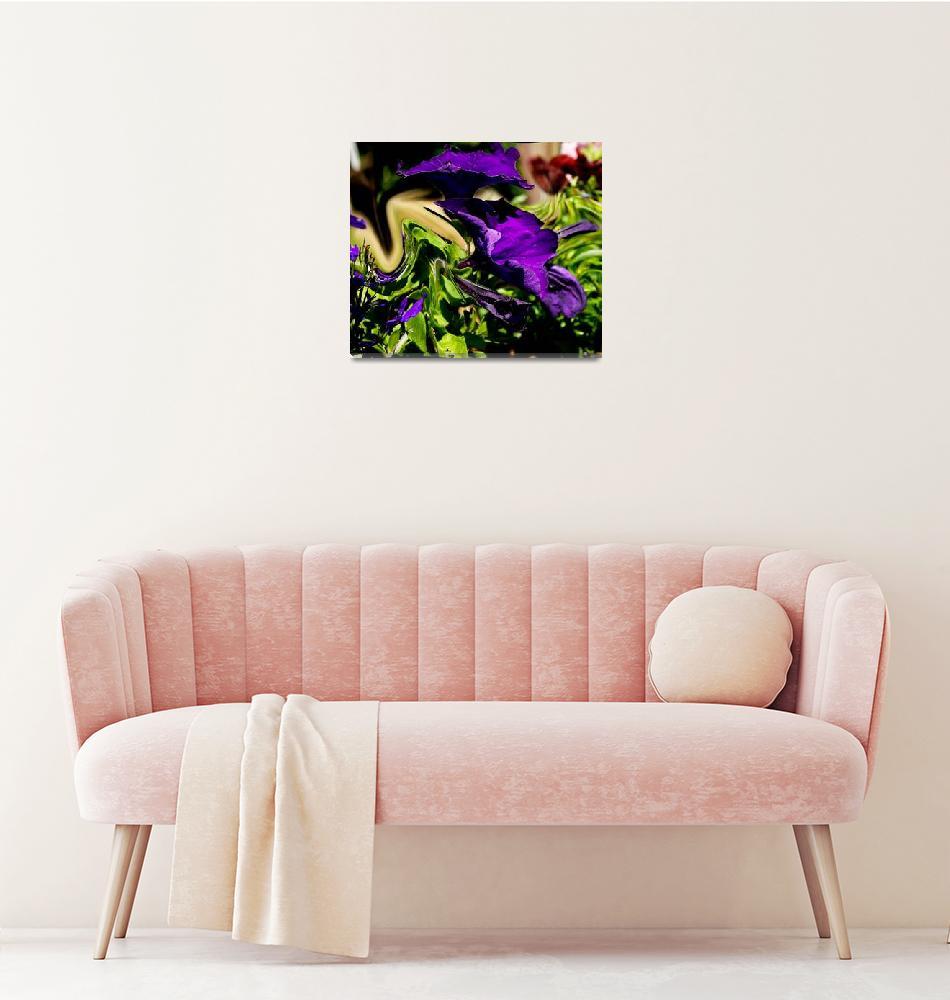 """""""Purple Panic""""  by IrishPhotography"""