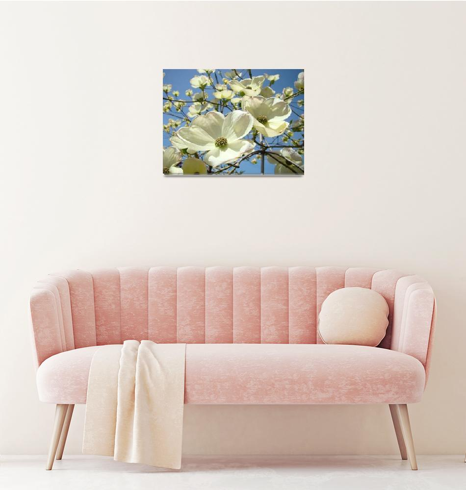 """Blue Sky Spring White Dogwood Flowers Floral""  (2014) by BasleeTroutman"